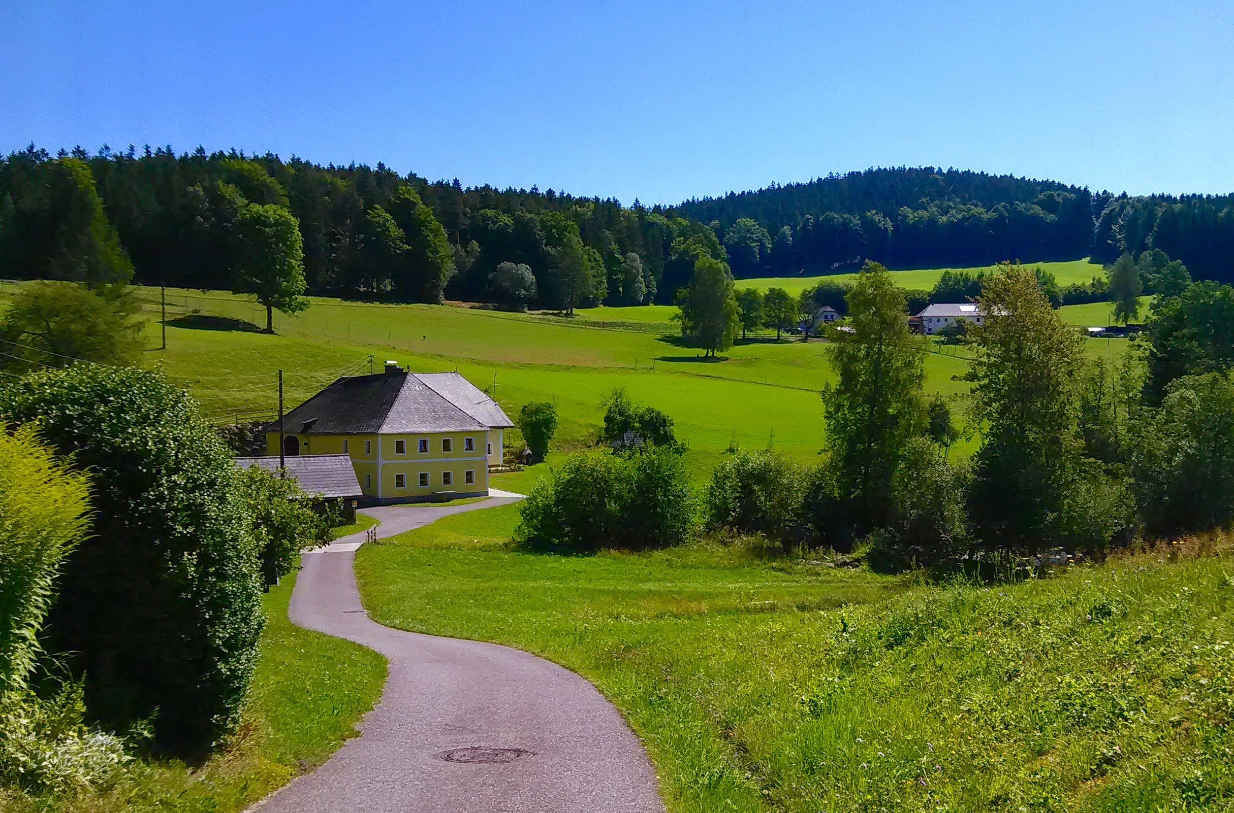Guglwald Scenery